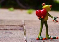 broscuta care tine in mana o inima rosie